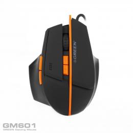 GM601